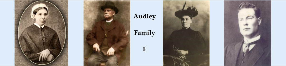 The Website about the Audley Surname